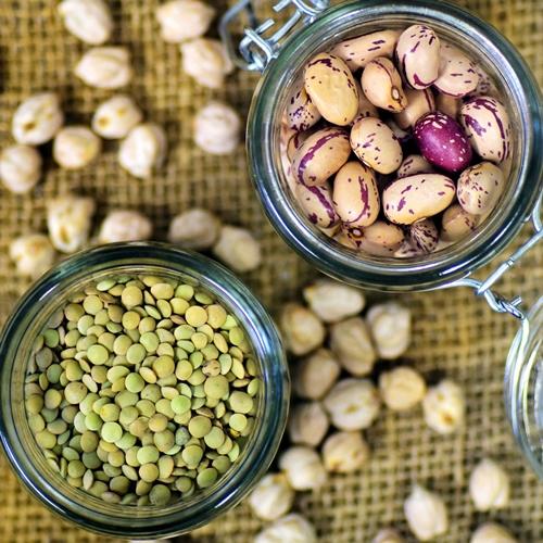 fitness ernährung vegane proteinquellen